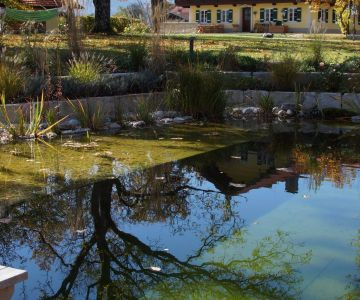 Der_Glaserhof_heute_-_Pool